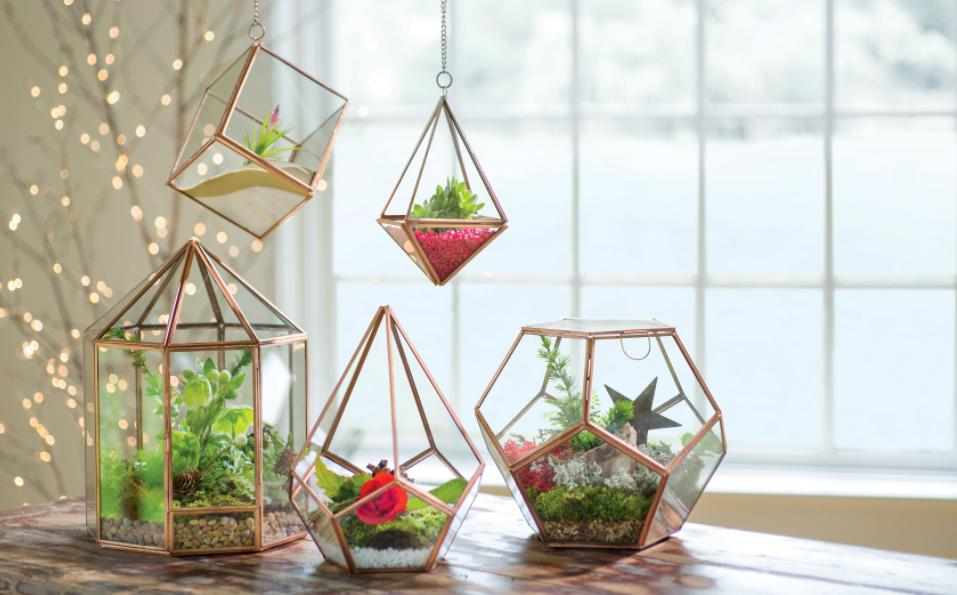 cara membuat terrarium